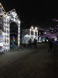 s-写真 2013-12-10 18 03 53.jpg