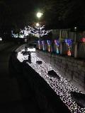 s-写真 2013-12-10 18 06 23.jpg